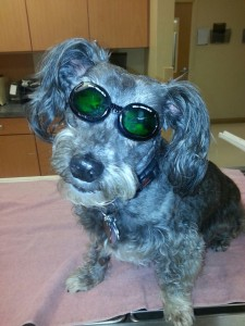 Creepy laser therapy