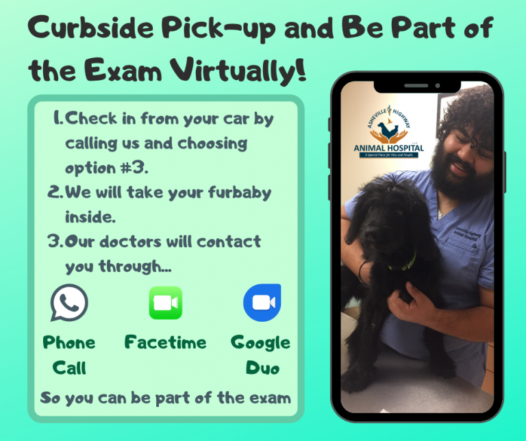 Curbside Pick-up and Virtual Exams